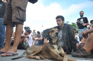 Manifestação em Salvador - 17-06-13 - Crédito Reginaldo Ipê (2)