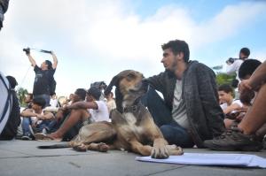 Manifestação em Salvador - 17-06-13 - Crédito Reginaldo Ipê (4)