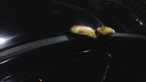 Bananas colocadas pelos racistas no carro do árbitro  Márcio Chagas da Silva