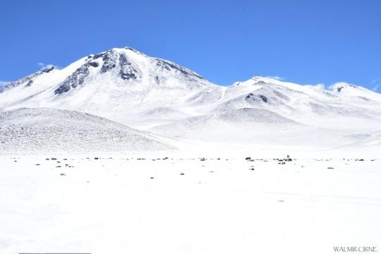 Walmir Cirne - Deserto boliviano (1)